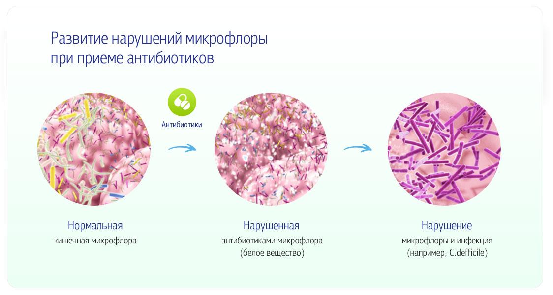 энтерол с антибиотиками одновременно